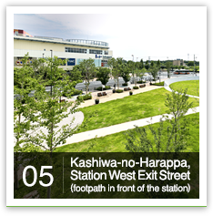 05 Kashiwa-no-Harappa, Station West Exit Street (footpath in front of the station)